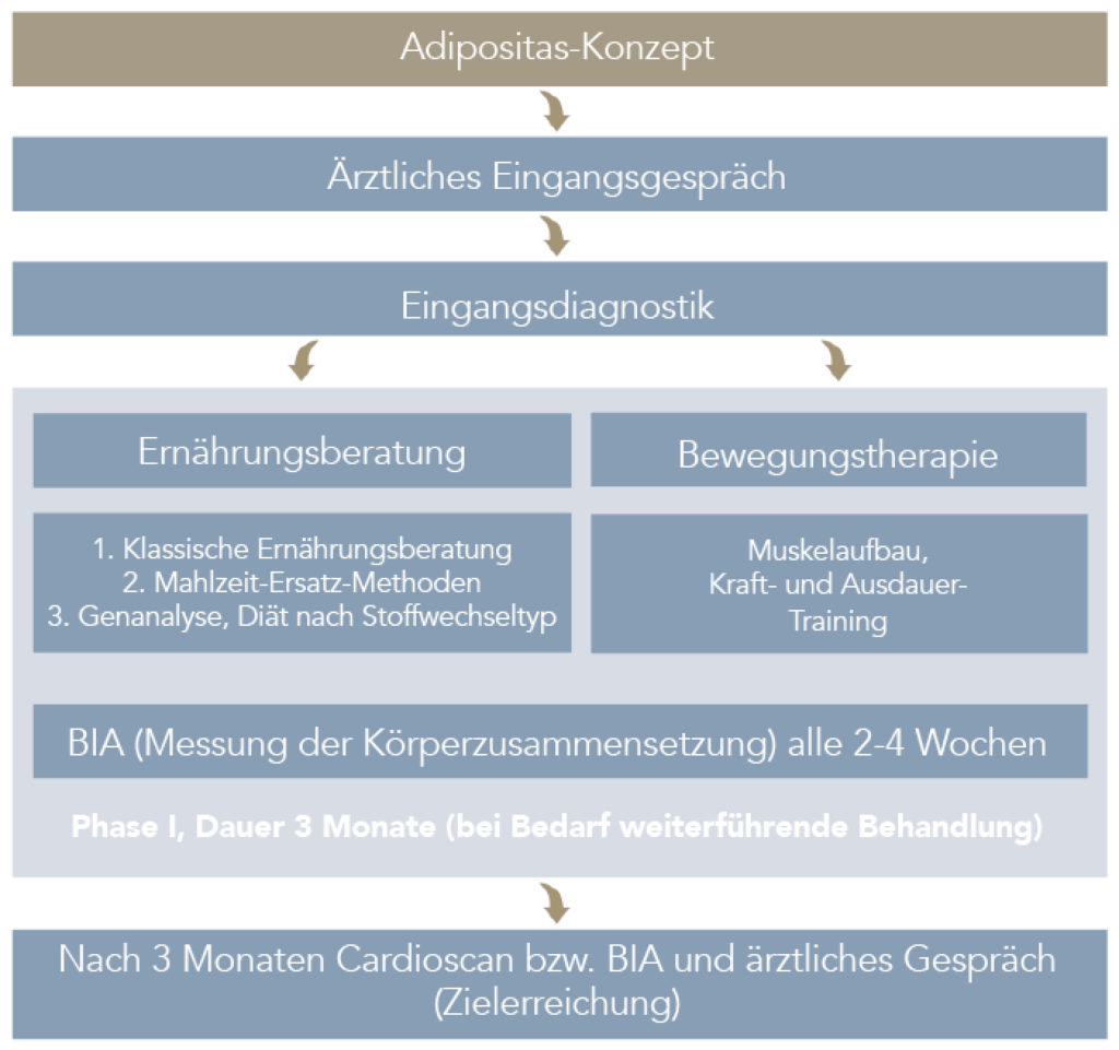 ADIPOSITAS-KONZEPT-Medizinicum-Hamburg-Tabelle-neu