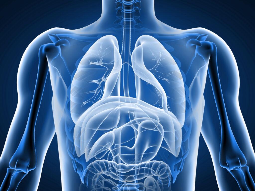 Medizinicum-Lunge-8
